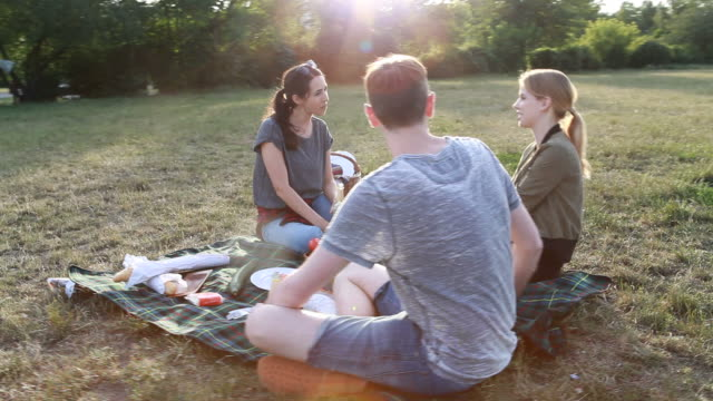 young friends picnic during sunset - t shirt stock videos & royalty-free footage