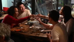 Young friends toast and drink saki in Japanese izakaya
