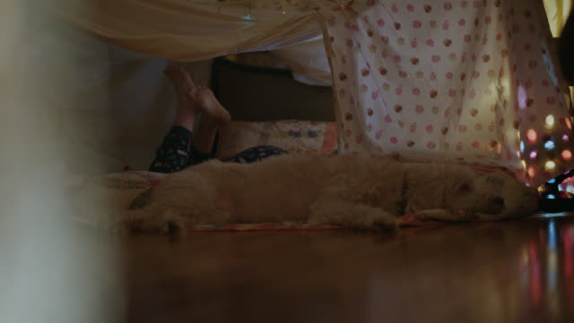 young girl and her dog relax inside a homemade blanket tent. - sofa stock videos & royalty-free footage