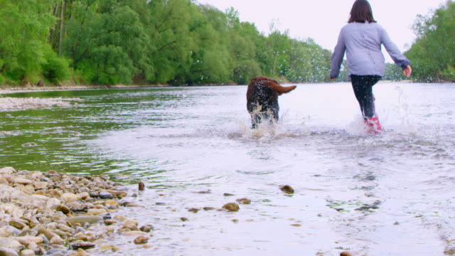 slo mo young girl and her dog running along the bank of the river - wet stock videos & royalty-free footage