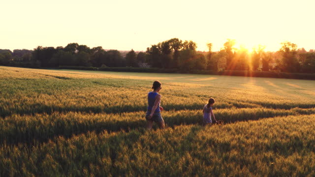 young girl and her mother walking the dog at sunset - grass family stock videos & royalty-free footage