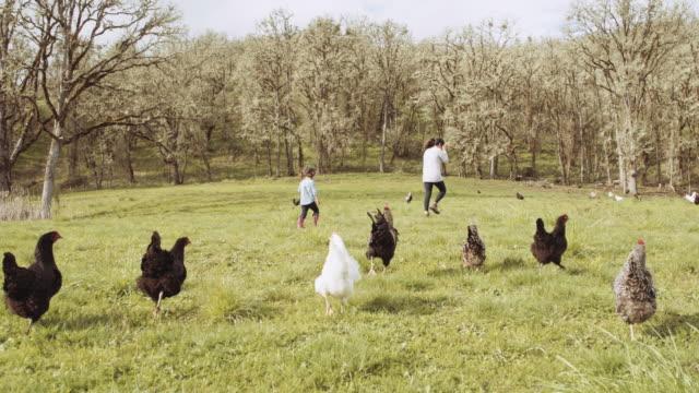 Junge Mädchen und Mutter im Bereich der Hühner