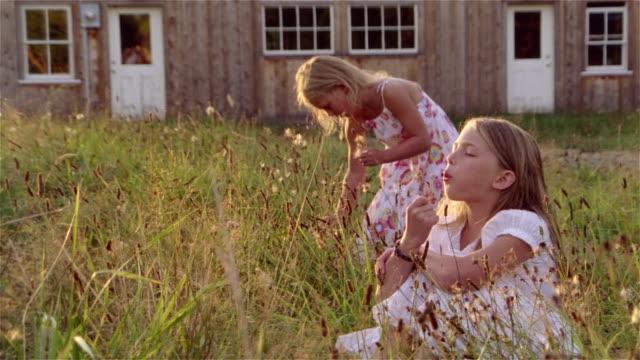 stockvideo's en b-roll-footage met young girl blowing dandelion in tall grass as her sister picks dandelions behind her - zonnejurk