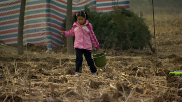 WS Young girl carrying buckets of water across dirt field where young trees are being planted / Beijing, China
