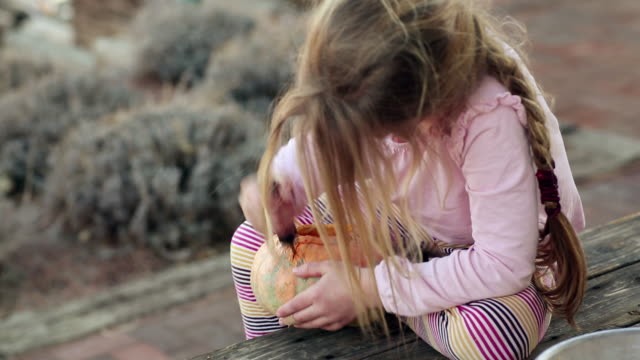 MS Young girl carving pumpkin / Lamy, New Mexico, United States