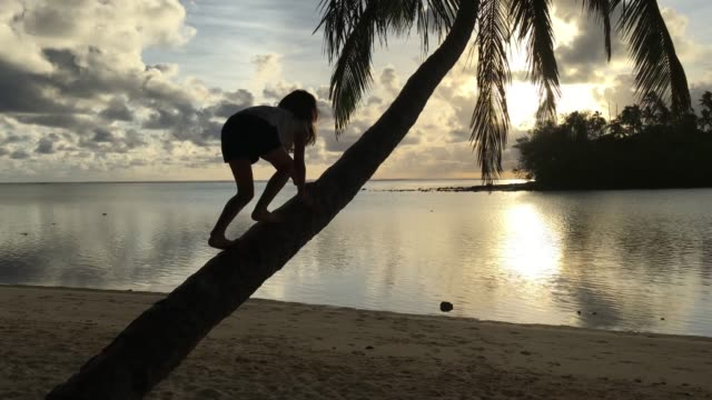 Young girl climbs on a coconut  palm tree on a tropical pacific island beach