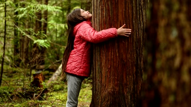 young girl connecting in nature - hugging tree stock videos & royalty-free footage