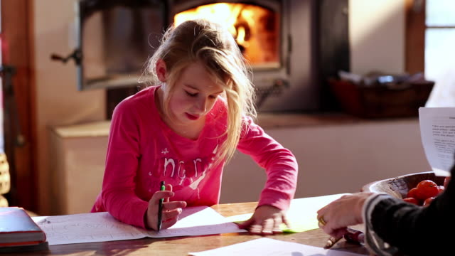 ms young girl doing her homework with her mother / lamy, new mexico, united states - lamy new mexico stock videos and b-roll footage