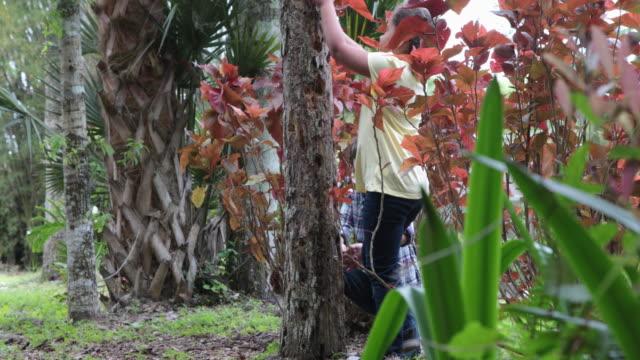 vídeos de stock e filmes b-roll de young girl helps her friend to climb a tree in the woods - fazer um favor