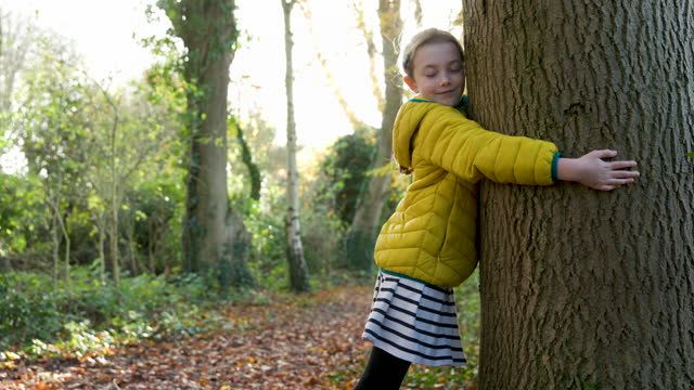 young girl in yellow coat hugging a tree - tree hugging stock videos & royalty-free footage