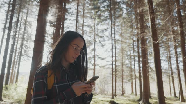 young girl is relaxing in the pine woodland - pinaceae stock videos & royalty-free footage