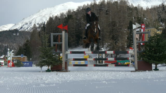 """young girl jumping with a bay horse during the """"winter concours hippique st. moritz"""" on 10 february 2016, st. moritz - fence点の映像素材/bロール"""