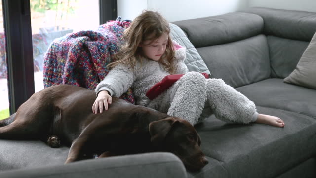 young girl on tablet computer with pet dog - primary age child stock videos & royalty-free footage