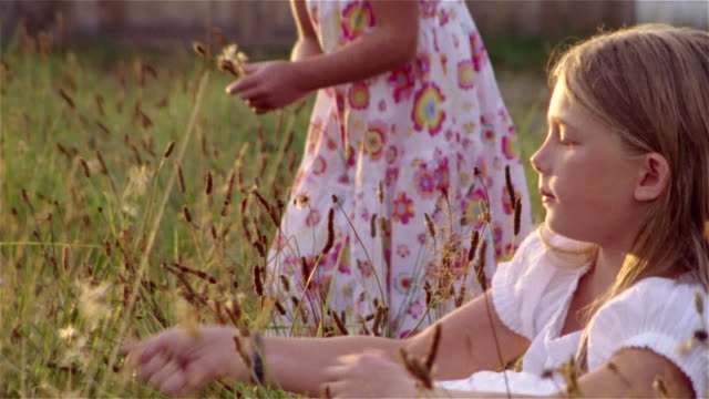 stockvideo's en b-roll-footage met young girl picking and blowing on dandelion as her sister picks dandelions and stalks of wheat behind her - zonnejurk