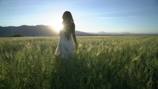 ws ts sm young girl playing in a wheatfield. - pre adolescent child stock videos & royalty-free footage