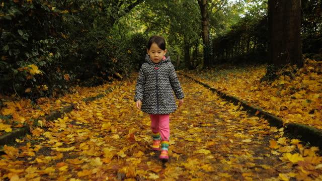 秋の田舎の公園で遊んでいる若い女の子 - 幼児点の映像素材/bロール