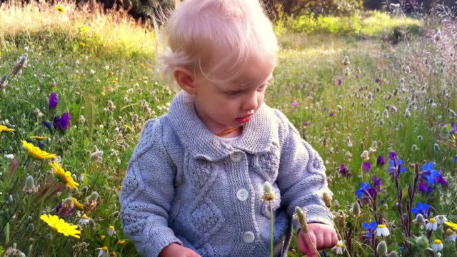 young girl playing with spring flowers - mid length hair stock videos & royalty-free footage