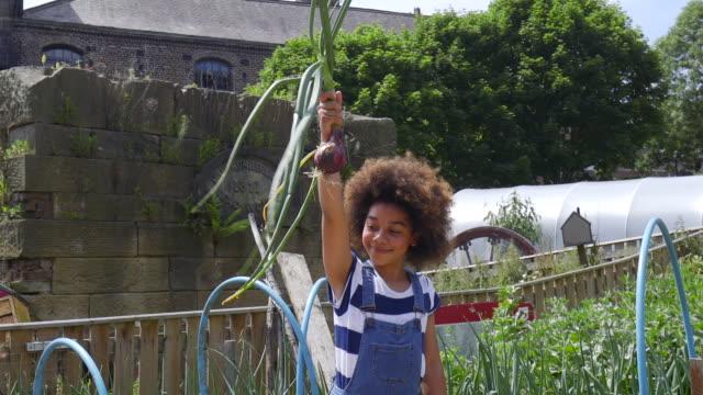 Young Girl trekken radijs uit grond op boerderij