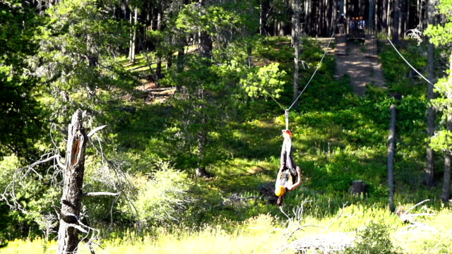 young girl riding zip line across ravine upside down - pulley stock videos & royalty-free footage