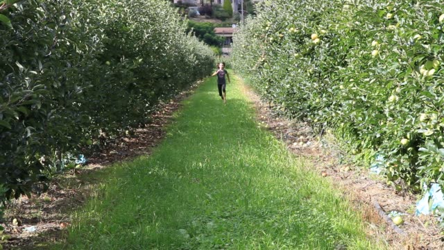 Young girl runing in apple orchard front view