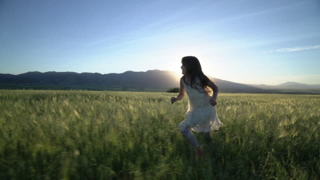 ws ts sm young girl running through a wheatfield. - sunny stock videos & royalty-free footage
