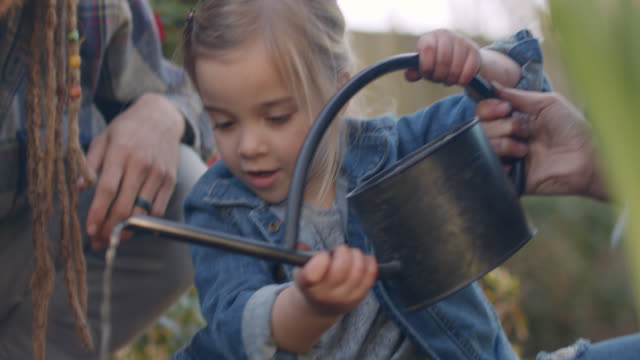 cu young girl uses a watering can to pour water on soil with assistance from parents - grass family stock videos & royalty-free footage