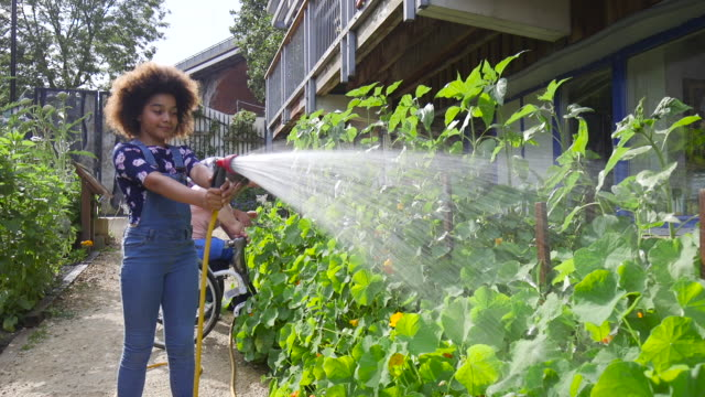 young girl volunteering on local farm - sprinkler system stock videos & royalty-free footage