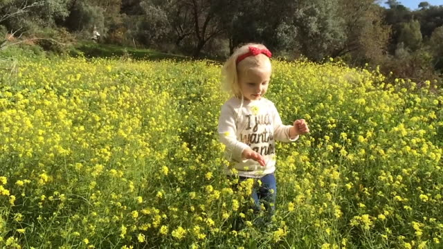 young girl walking to camera in flower meadow - hair accessory stock videos & royalty-free footage