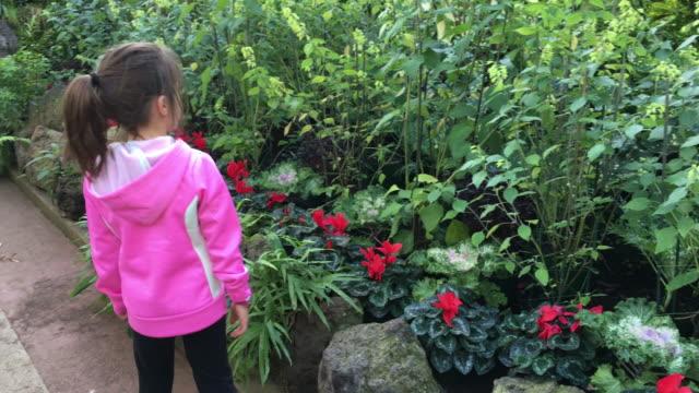vídeos de stock, filmes e b-roll de young girl walks into a greenhouse - ponto de vista de caminhada