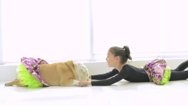 vidéos et rushes de young girl with english bulldog - robe