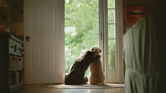 vídeos y material grabado en eventos de stock de ls of young girl wrapping her arm around her dog as she looks out front door - togetherness