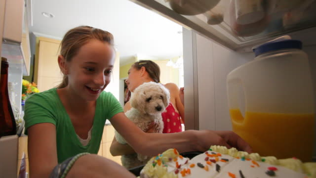 young girls and pet dog steal cake from refrigerator - open refrigerator stock videos & royalty-free footage