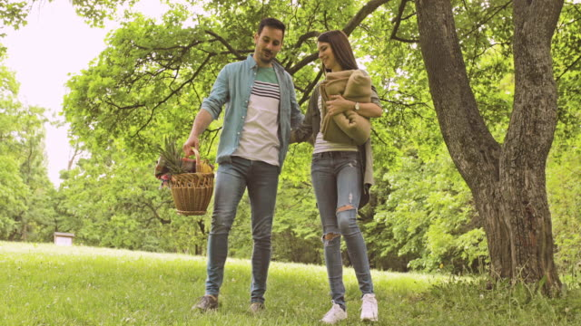 young happy couple holding hands and communicating while going on picnic in the park. - picnic basket stock videos & royalty-free footage