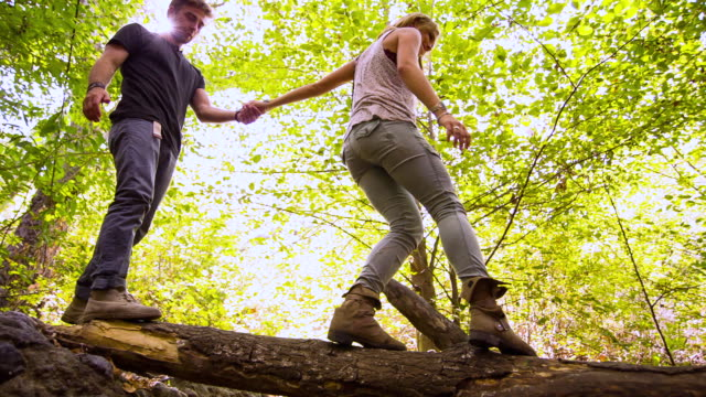 vidéos et rushes de ms pan la young happy couple holding hands, hiking, walking in forest, climbing over creek on fallen tree trunk / venice, california, united states  - montrer