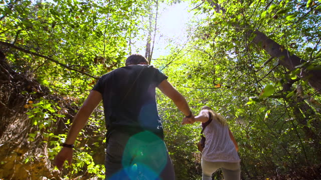 MS TS POV Young happy couple holding hands, hiking, walking in forest, Sun shining through trees / Venice, California, United States