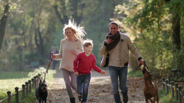 young happy family / dog owners / walking the dogs in the park on a beautiful fall day / having great fun