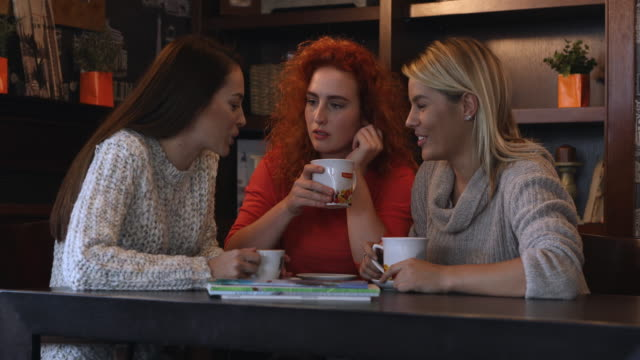 young happy women gossiping and enjoying in conversation while relaxing in a cafe. - female friendship stock videos & royalty-free footage