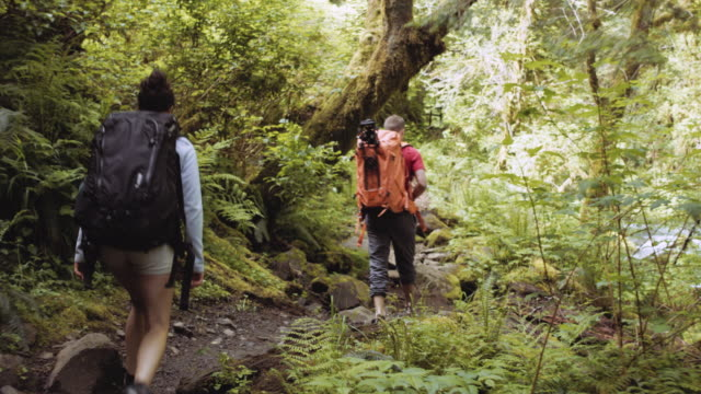 young heterosexual couple backpacking through woods - footpath stock videos & royalty-free footage