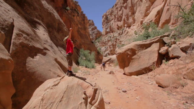 Young hiker boy stands on top of a rock inside a canyon with arm stretched up excitedly