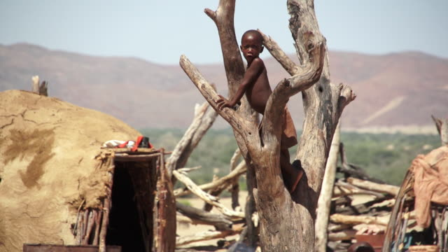 MS TU Young himba boy climbing up on dead tree in front clay hut / Himba, Kunene, Namibia
