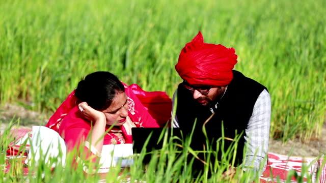 young indian men & women using laptop near green field - turban stock videos & royalty-free footage