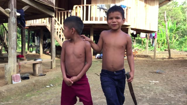 young kichwa indian brothers pose shirtless for camera in primitive village of autonomous region of sarayaku in ecuadorian amazon - shirtless stock videos & royalty-free footage