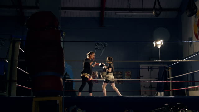 young kickboxer training - females stock videos & royalty-free footage