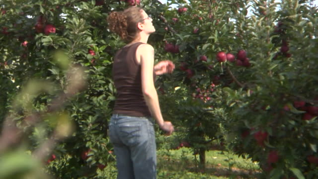 HD: Young lady apple picking