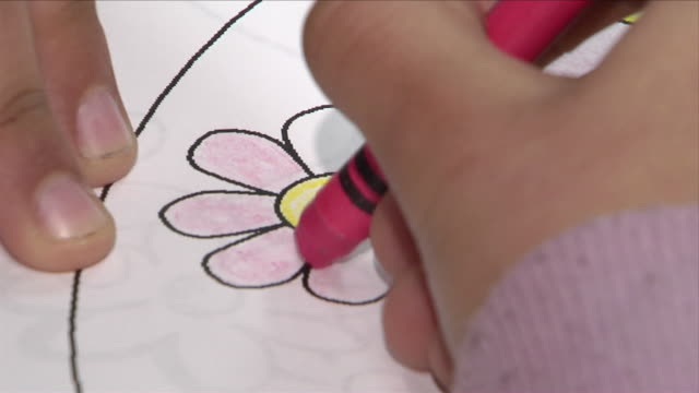 young latino girl hand coloring w/ pink crayon on printed image on paper of daisy flower petals. hispanic, female, child, summer activities, yellows,... - crayon stock videos & royalty-free footage
