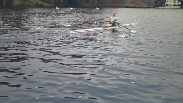 young male athlete rowing boat in river - sculling video stock e b–roll