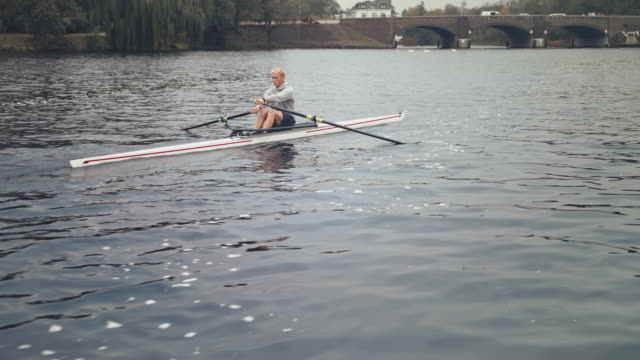young male sculling in river - sculling video stock e b–roll