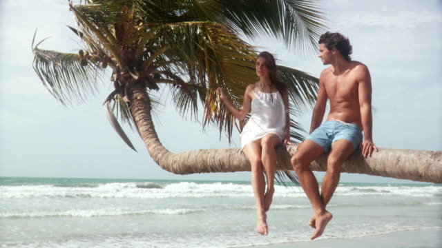 ws young man and woman sitting on palm tree over beach with waves rolling in/ scarborough, tobago, trinidad and tobago - swimming shorts stock videos & royalty-free footage
