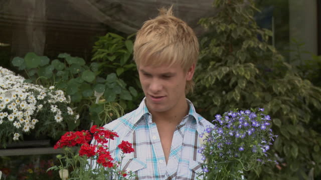 cu young man choosing and smelling flowers / berlin, germany - junger mann allein stock-videos und b-roll-filmmaterial
