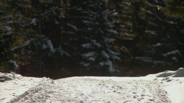 ws young man cross-country skiing uphill / pokljuka, triglav national park, slovenia - triglav national park stock videos and b-roll footage